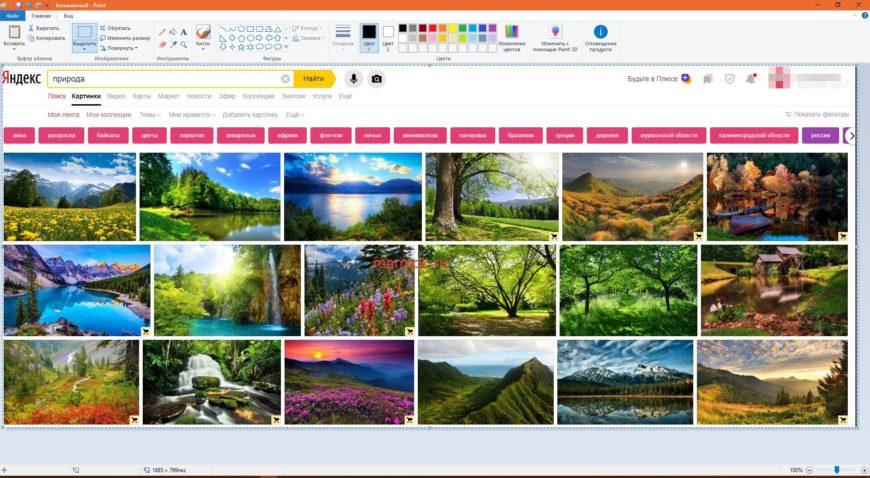пример скриншота вставленного в ms paint