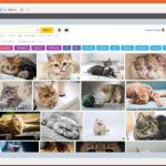 Как сделать скриншот в Windows 10, 8, 7