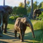 Ошибки Planet Zoo способы решения