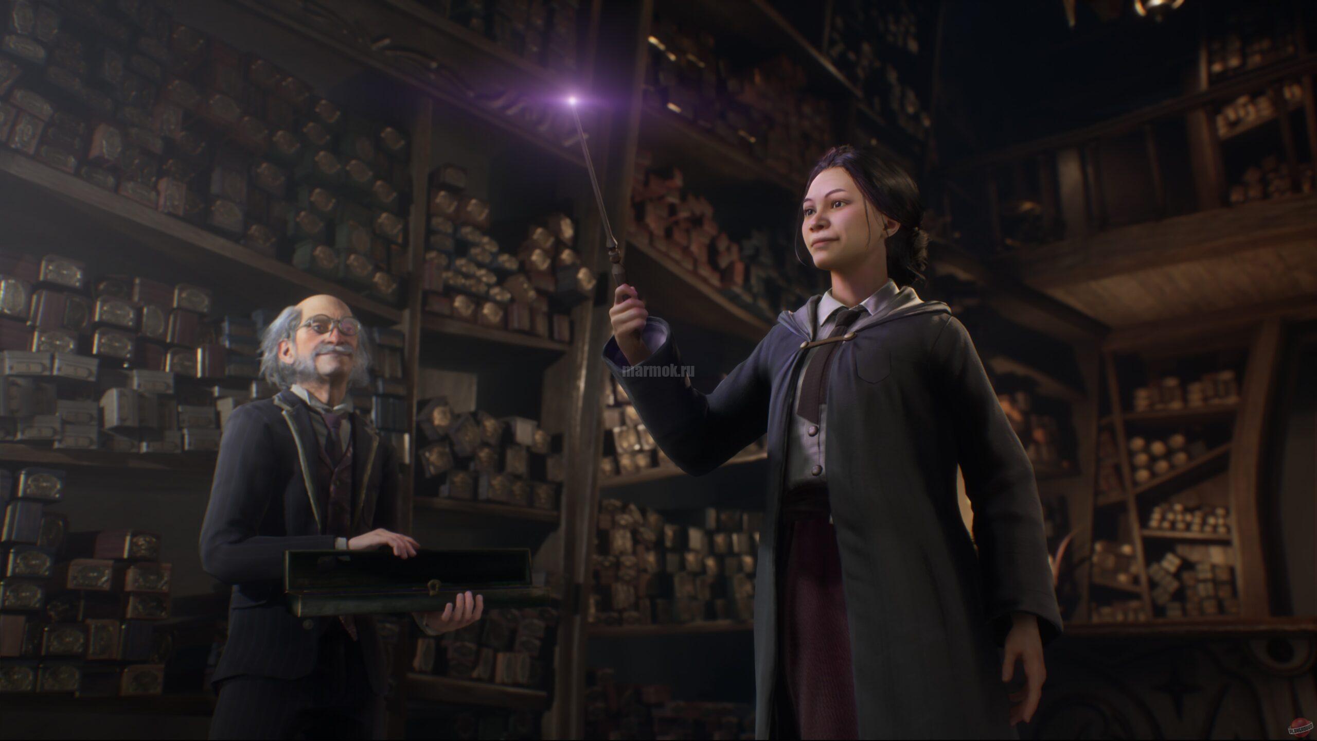 Скриншот из игры Hogwarts Legacy