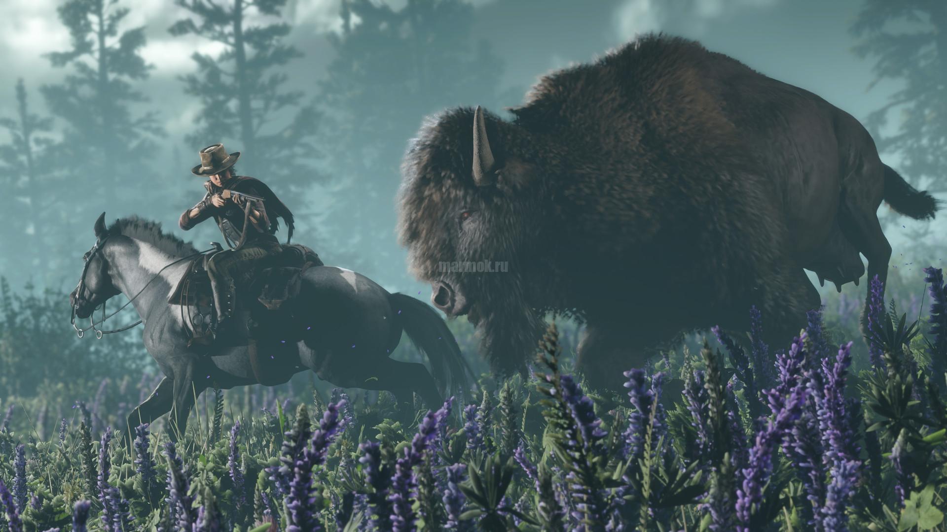 Скриншот из игры Red Dead Online