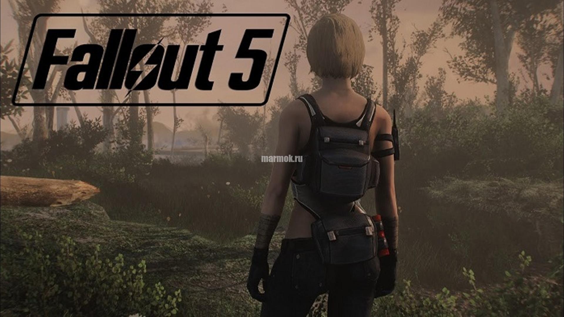 Скриншот из игры Fallout 5