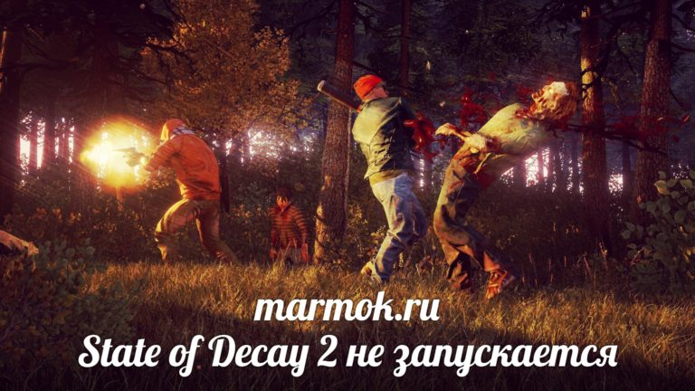State of Decay 2 не запускается
